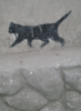 Кошка Морошка