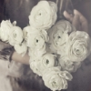 flower_soul userpic