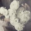 flower_soul userpic