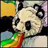 panda_raduga