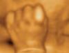 perfect hand
