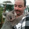 darthtofu: koala