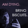 Dying.Biscuits.