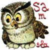 samSla: cuteOwl