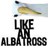 misc: awesome like an albatross