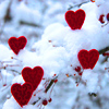 Valentines Snowy Hearts