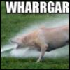 twobrokendogs userpic