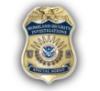 HSI Badge