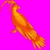 ariaphoenix userpic