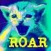 ROAR - 2