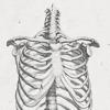 마리아: these bones will remind you
