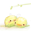 geminiedpcj userpic