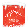 MBS logo NY