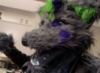 furtex userpic