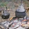 campfire, cooking