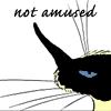 layla_aaron: 9 Chickwood - not amused