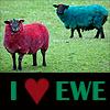usakiwigirl: I Love Ewe