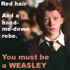 Harry Potter- You must be a Wesley