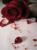 junipers_rose userpic