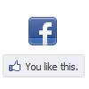 ment_revolution: facebook