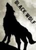 black0wolf userpic