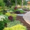 Traycer: gardens