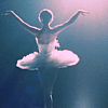black swan--ballet