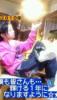 chen_chuuu: pic#107159418