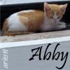 *~Kristen*~: Misc - Abby