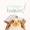 it's about bunnies!