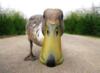 dawn_duck userpic