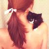 кот на плече