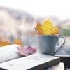 Книги осень