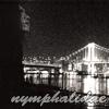 nymphalidae: Die Brücke