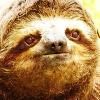 internetsingle userpic