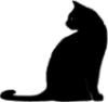 lonely_phantom: черный кот