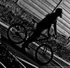 велосипед, я