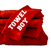 Fic: Towel Boy