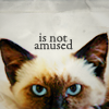 fuzzythings - kitteh is not amused