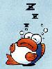 rip van fish