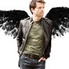 Meredith: Castiel - wings