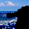 Seattle Photography Enthusiasts