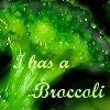 I Has a Broccoli