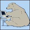 Beth H: Bears laptop (copperbadge)