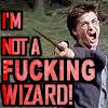 HP: FUCKING WIZARD