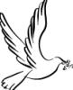 Птица мира