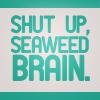 percy & annabeth: seaweed brain