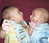 blenderx: twins