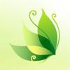 зеленый листочек