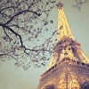 ESTRELLA POLAR: Paris   Torre Eiffel